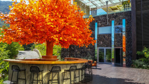 The Orange Deck at the Hotel Mousai in Puerto Vallarta