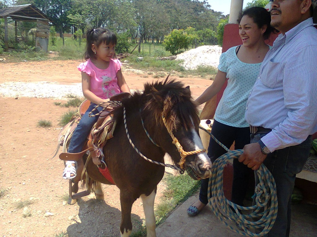 little girl riding pony