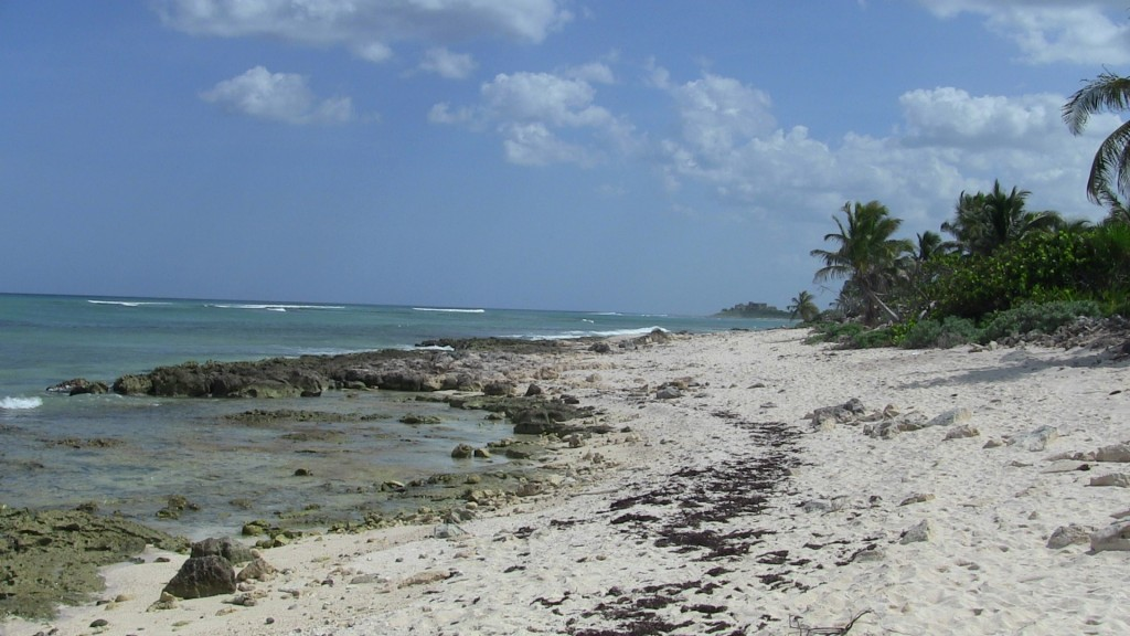 the coast south of Akumal
