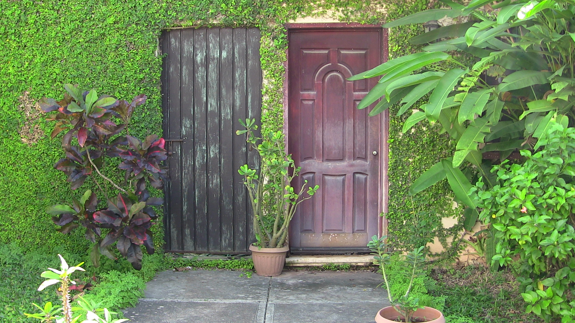 Doors in Valladolid, Mexico
