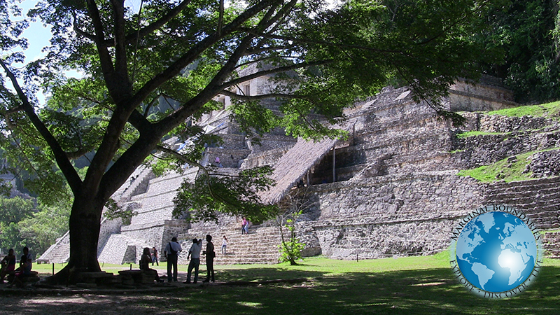 Maya ruinTemple of Inscriptions at Palenques