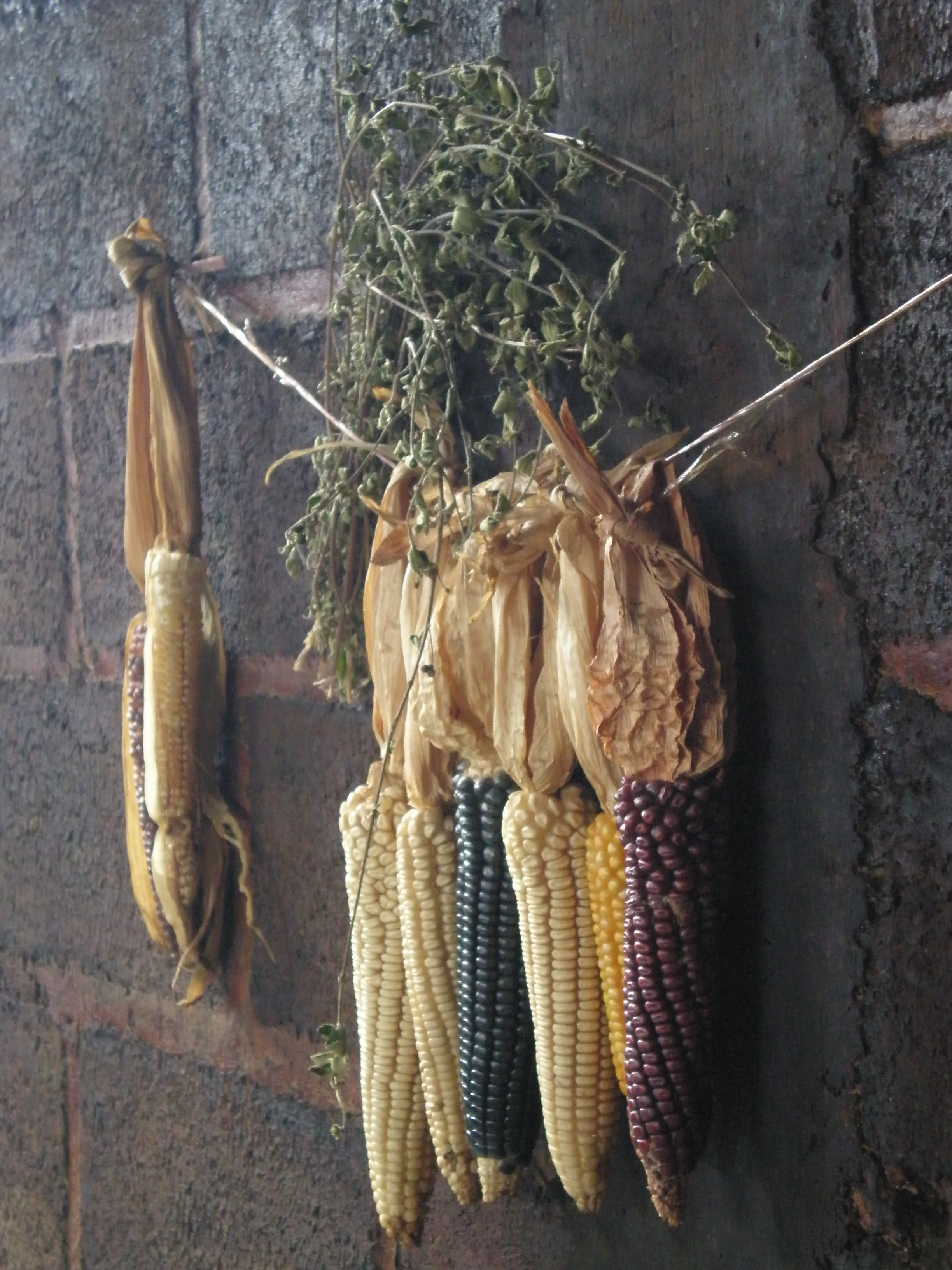 Corn in San Juan Chamula