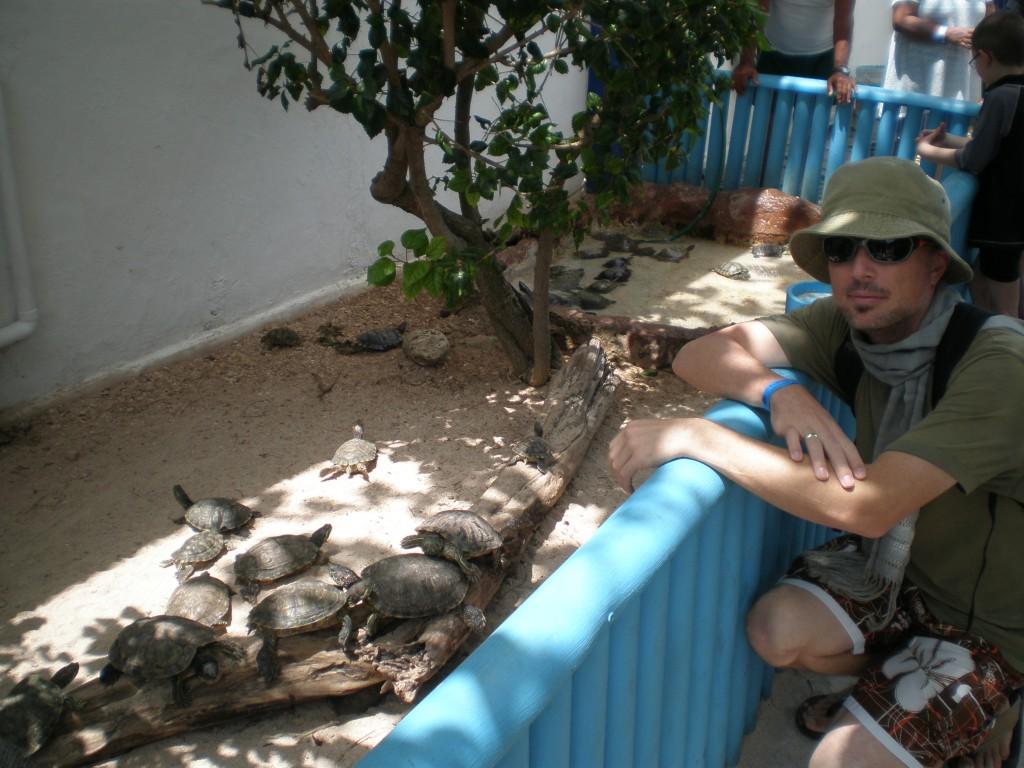 Turtle Farm, Isla Mujeres