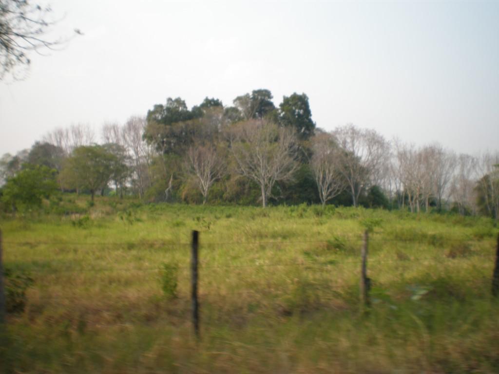 Casadas Ruins