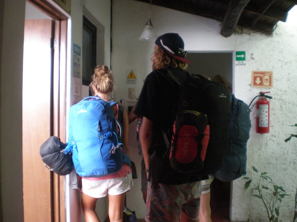 Backpacker arrivals