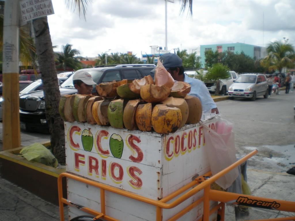 cold, fresh coconuts