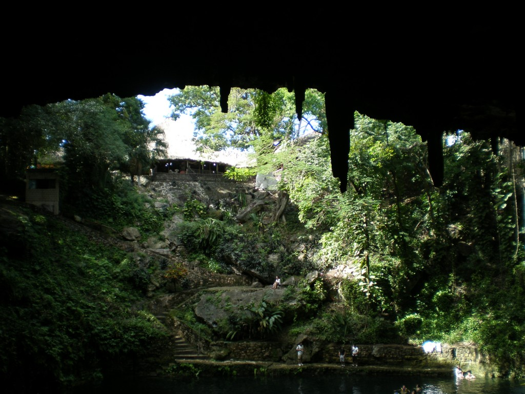 view from inside the cenote