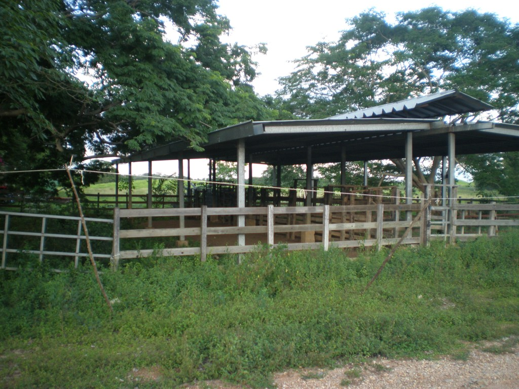 stables and corrals