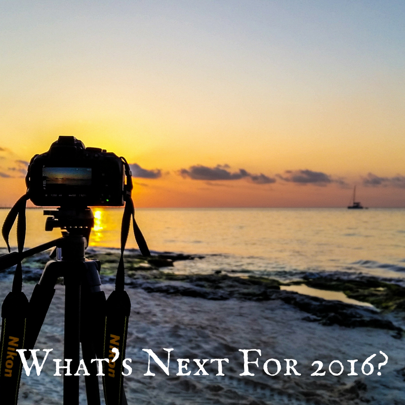 what's next for 2016